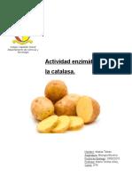 Actividad enzimática de la catalasa.docx