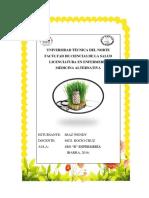 Díaz Wendy-Portafolio Medicina Alternativa