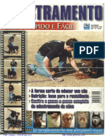 Adestramento de Cães - Curso Rápido e Prático