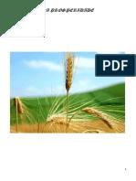 O Segredo da Prosperidade.pdf