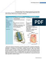 Micro Biolog í A