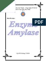 Bia Enzyme Amylase