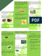 Nutrisi Ibu Menyusui Leaflet
