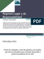 Régimen Legal NATTAN NISIMBLAT