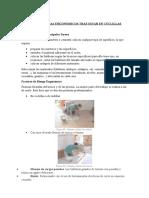 tareas-ergonomia (1)