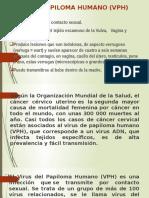Virus Papiloma Humano (Vph)