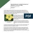 APACAME - Mensagem Doce 110 - Artigo (2)