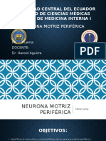 Neurona motriz periférica