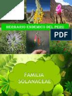 Herbario Endemico Del Peru