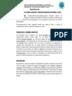 Informe de Fibras I