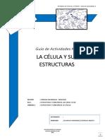 1°-Guía-Actividades-3