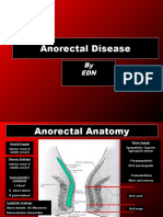 40114244 Anorectal Diseases