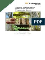 tennessee trees.pdf