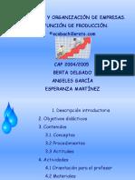 produccion.pps
