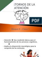 Trastornos de la Atencion.pdf