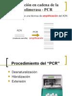 Fundamentos de PCR - Copia