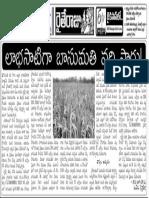 20140905b 010112004 Basumati Rice Cultivation