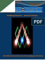 Rodin AeroDynamics Presentation