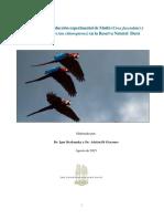 Proyecto Reintroduccion Aves