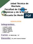 Informe de Inspeccion de Aparato Respiratorio1