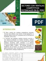 Sectores Con Ventajas Competitivas Potenciales en El Perú