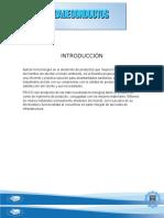 TRABAJO-HIDRAULICA21.docx