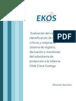 19-Informe-Ejecutivo-Evaluación-del-uso-e-identificación-de-nudos-críticos-y-mejoras-al-SDRM.pdf