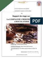 Docfoc.com-Rapport Aiguebelle (MALKI Yassine)