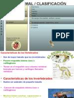 146_2_ANIMALES_CLASIFICACION[1]