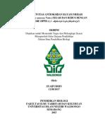 113811017.pdf