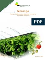 4 Morango