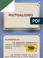 MUTUALISMO - Araceli.pptx