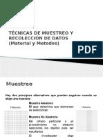 2._Tecnicas_de_Muestreo_y_Recoleccion_de_Datos.pptx