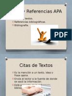 Citas y Referencias APA.pptx