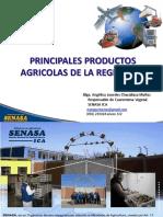 Principales Productos Agricolas de La Region Ica