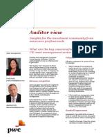 Auditor View Asset Management