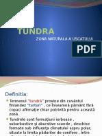 0_tundra