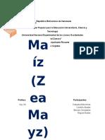 Generalidades sobre el Maiz