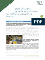 Cadena de Valor de Plantas Medicinales Loreto