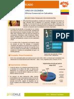 1412259637FMP_Colombia_Vinos_2014