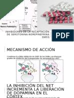 Inhibidores de La Recaptación de Serotonina-norepinefrina