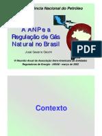 A ANP e a Regulação Do Gas