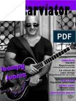 Guitar Viator 062016