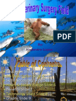 Information on Veterinary Surgery Field