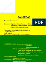 semiologia Pancreas