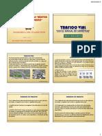 TRAFICO VIAL.pdf