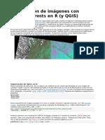 Clasificación de Imágenes Con RandomForests en R