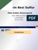 Protein Besi Sulfur