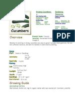 cucumber guide.docx