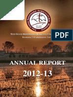 annualreport2012-13